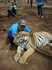 My friend Hmung and her tiger We Ha: by teamgavigan, Views[64]