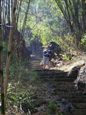 Up the 600m of steps to Phra That Cave in Erawan National Park: by teamgavigan, Views[46]