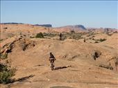 Slickrock trail, Moab: by thefuegoproject, Views[187]