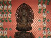 Buddha Toothe Temple: by tnj4884, Views[119]