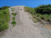 Me sand boarding : by wander-wonder, Views[16]
