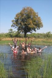 Beware of Crocs and Hippos OKAVANGA DELTA: by whereintheworld, Views[407]