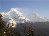 Annapurna South and Annapurna 1.: by willlou, Views[248]