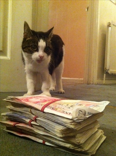My wad of filthy money. Mickey Finn is not impressed.