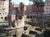 Cassie's favorite place in Rome....where Caesar was supposedly killed, now its a cat sanctuary, seriously!: by wini0017, Views[122]