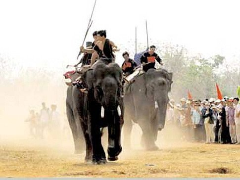 Kicking up some dust!  The annual Elephant Races in Don Village, Central Highlands, Vietnam
